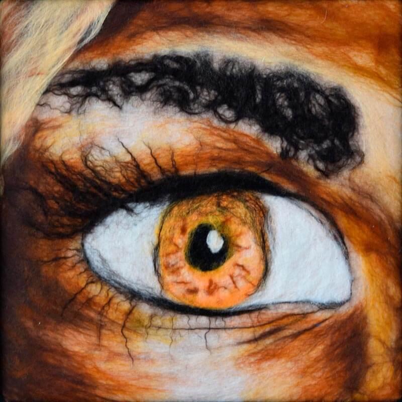 Nassfilzen: gefilztest Auge